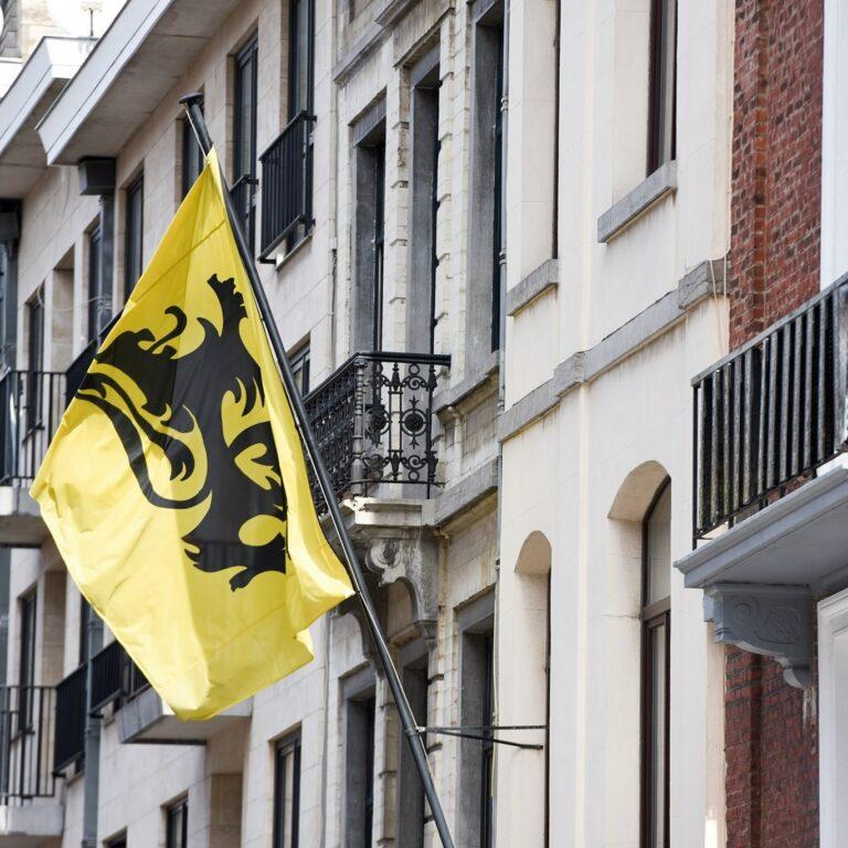 Het Vlaams Komitee Voor Brussel